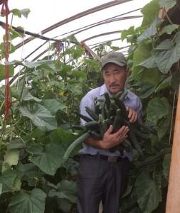 Mongolian gardener a